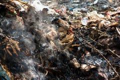Förlorad förbränning Arkivbild