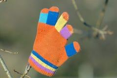 förlorad handske Arkivbild