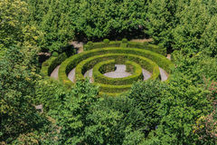 förlorad maze Arkivbilder