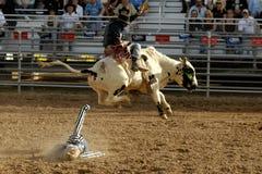 förlorad rodeo för dagar dutchman Arkivfoton