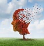 Förlorande Brain Function royaltyfri illustrationer