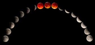 Förmörkelseblodmåne Royaltyfria Bilder