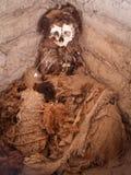 Förmultna kroppen i öppen grav Royaltyfri Bild