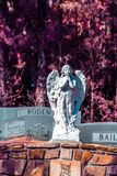 Förmyndare Angel Resting överst av en gravsten i infrarött arkivfoton