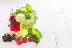 Förnyande drinkar och olika nya frukter och bär Fotografering för Bildbyråer