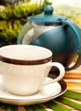 Förnyande grönt te betyder förnyade drinkar och uppfriskningar royaltyfri bild