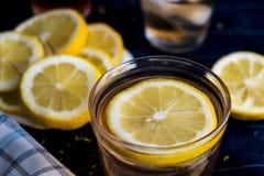 Förnyande med is te med citronrundor royaltyfria bilder