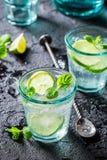 Förnyelse och kalla Mojito med nya ingredienser Royaltyfria Bilder