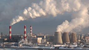 Förorena växten stock video