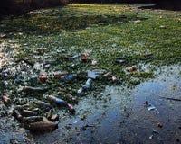förorenad flod Arkivbilder