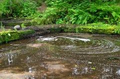 förorenad flod Royaltyfri Bild