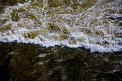 Förorenad flod i mörk brunt Royaltyfri Fotografi