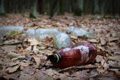 Förorenad skog Royaltyfri Foto