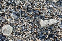Förorenad smutsig Black Sea strand i Rumänien Arkivbild