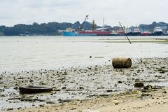 förorenad strand Arkivfoton
