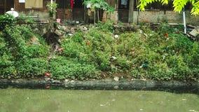 Förorenat flod och slumkvarterhus stock video