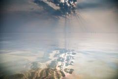 förorenat vatten royaltyfria bilder