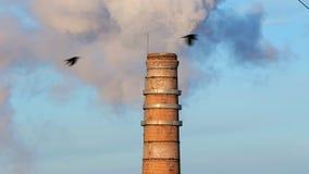 Föroreningciminiera stock video