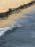 föroreningvatten Arkivbilder
