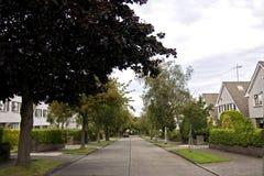 förorts- tyst gata Arkivbilder
