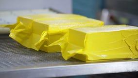 Förpackande process för ost Stäng sig upp av ost som bearbetar på matfabriken Fabriks- process för ostfabrik arkivfilmer