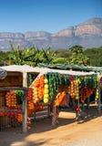 Försäljare på sidan av vägen i Sydafrika royaltyfri foto