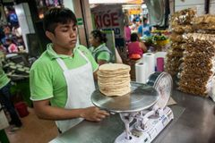 Försäljare som säljer majstortillor på en lokal marknad i Merida, Yu Royaltyfri Fotografi