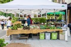 Försäljaren för drottningen Anne Farmers Market, lokal rotar lantgården arkivfoton