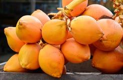 Försäljning för konung Coconuts Display For på den lilla gatan i Malwana Arkivbild