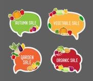 Försäljning för vektorgrönsakhöst i bubblaanförande vektor illustrationer