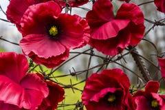 Försåg med en hulling Ukraina från blommor och - tråd Fotografering för Bildbyråer