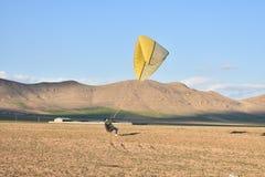Försöka att flyga med paragliders arkivbilder