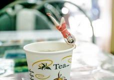 Försöka att göra yoga på kopp te Fotografering för Bildbyråer