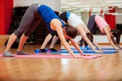 Försöka poserar ett nytt under yogagrupp Arkivfoto