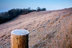 förse med en hulling frostig tråd för staket Royaltyfri Bild