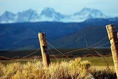 förse med en hulling gammal tråd för staket arkivbild