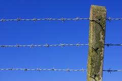 förse med en hulling stakettråd Royaltyfria Foton