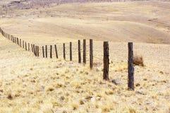 förse med en hulling stakettråd royaltyfri fotografi