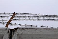 Försedd med en hulling wire2 Royaltyfria Foton