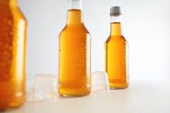 Förseglade flaskor med uppfriskningdrinken inom royaltyfri foto