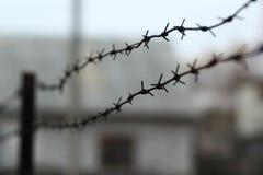 Försett med en hulling - binda runt om fängelset, suddig bakgrund Royaltyfria Bilder