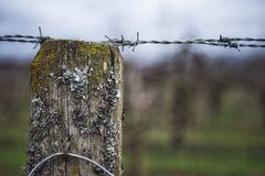 Försett med en hulling staket royaltyfri fotografi