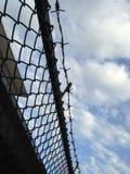 Försett med en hulling - staket för trådingrepp mot blå himmel (den selektiva fokusen av trådstaketet) Royaltyfria Bilder