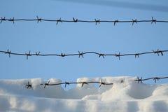 Försett med en hulling - tråd i snön Arkivfoton