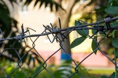 Försett med en hulling - tråd på ett staket mot en bakgrund av gröna sidor royaltyfri foto