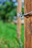 Försett med en hulling - trådcloseup Fotografering för Bildbyråer