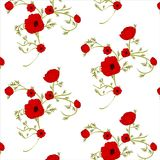Försiktig blom- bakgrund med röda vallmo Modeller för textiler seamless Arkivfoton