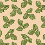 Försiktig botanisk sammansättning Sömlös tändande modellbakgrund 02 stock illustrationer
