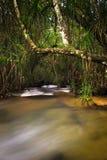 försiktig vattenfall Royaltyfri Bild