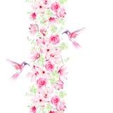 Försiktiga magnolia, rosor och kolibrier Vektordesignbeståndsdel w Arkivfoto